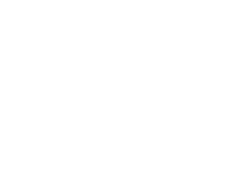 Lighthouse Solutions Group